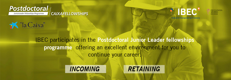 Postdoctoral Junior Leader fellowships programme at IBEC – Institute