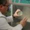 Identificat un mecanisme que explica la recurrència de moltes infeccions pulmonars
